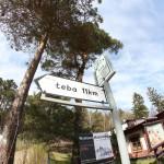 Stilo - Łeba - 11 km